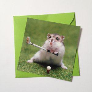 hamsterswing-kopie